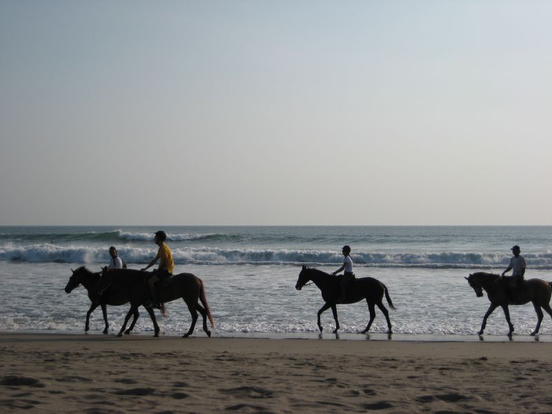 Seminyak horse riding